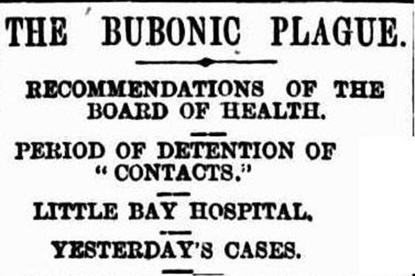 Prince Henry Hospital History 1900 An outbreak of Bubonic ...
