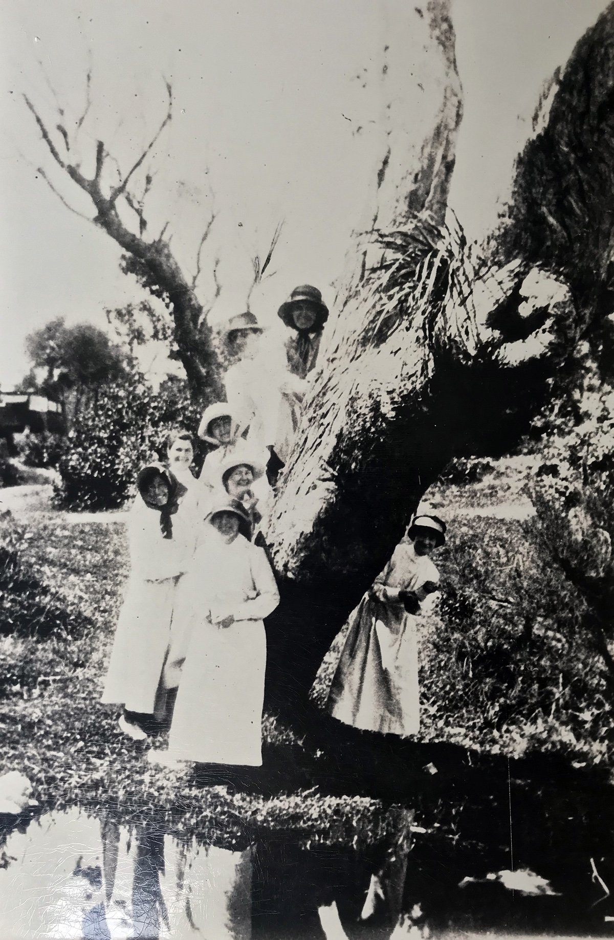 group portrait with tree