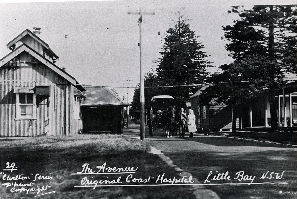 the avenue coast hospital