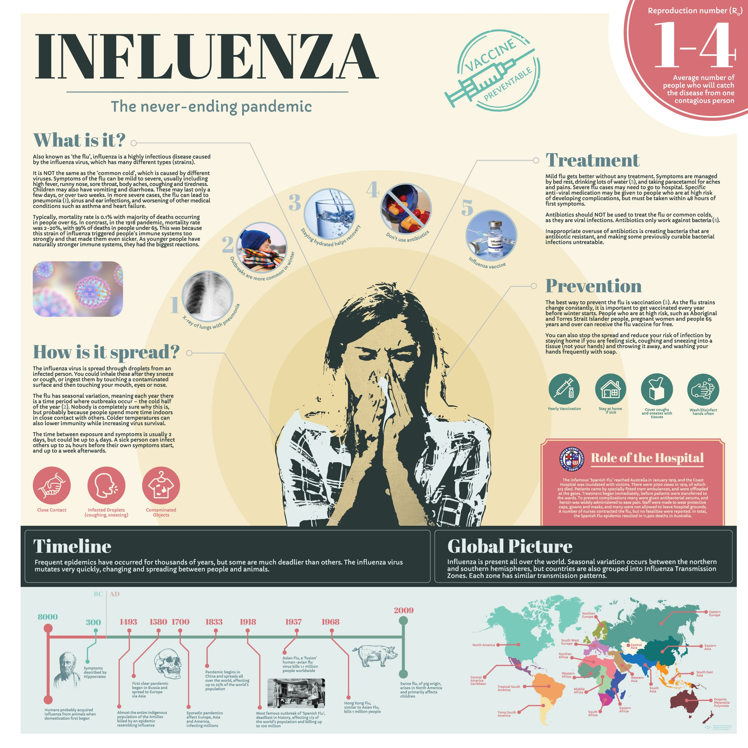 Infographic - Inflenza