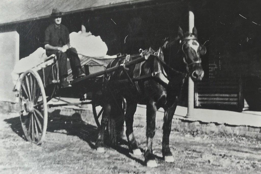 Laundry horse & cart